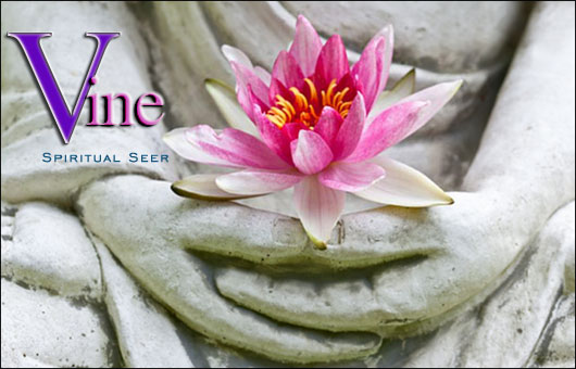 Accurate Australian Phone Psychic Readings - Vine Psychic