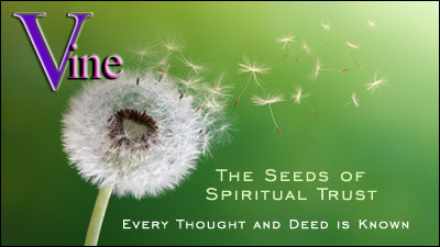Seeds of Spiritual Trust - Vine's Accurate Phone Psychic Readings