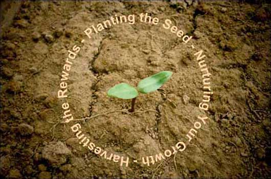 Vine is an Earth Seer - Planting the Seed, Nurturing Your Inner Growth, Harvesting the Rewards.