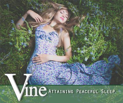 Vine Psychic Medium - PeacefulSleeping
