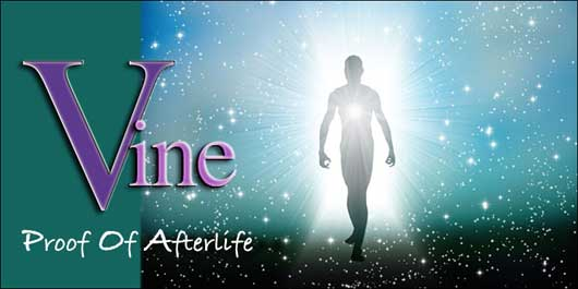 Australian Vine Psychic Mediumship - Proof of Afterlife