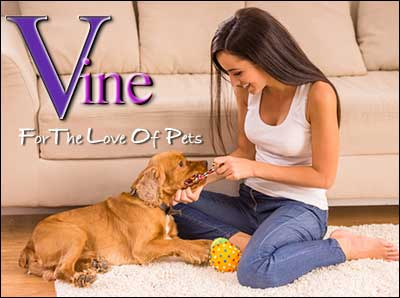 Vine Psychic Pets - Photo of Woman with Dog Inside