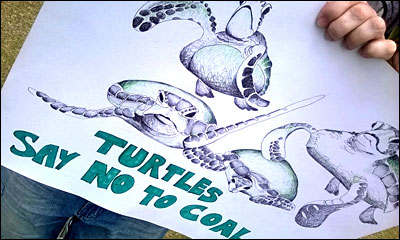 Vine Psychic Spiritual Responsibility - Turtles Say No to Coal