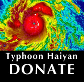 Vine Psychic Typhoon Haiyan Donate